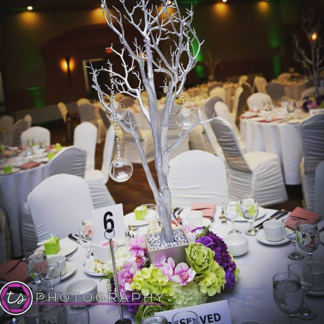 Our silver manzanita tree with a floral ring and hanginghellip